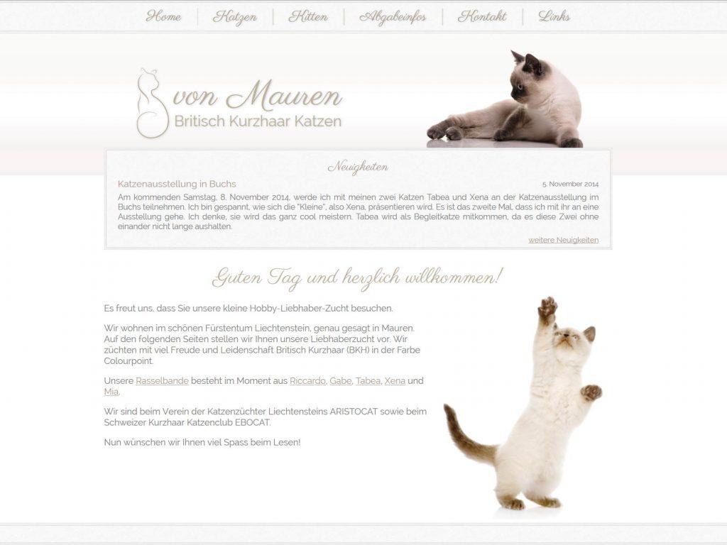 Webseite der Katzenzucht für Britisch Kurzhaar Katzen von Mauren